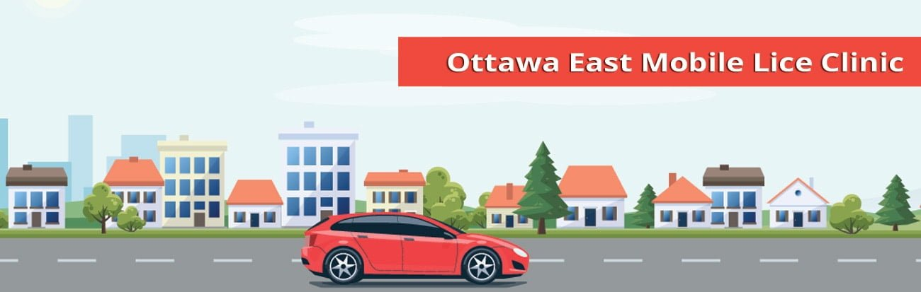 Ottawa East mobile lice treatment services