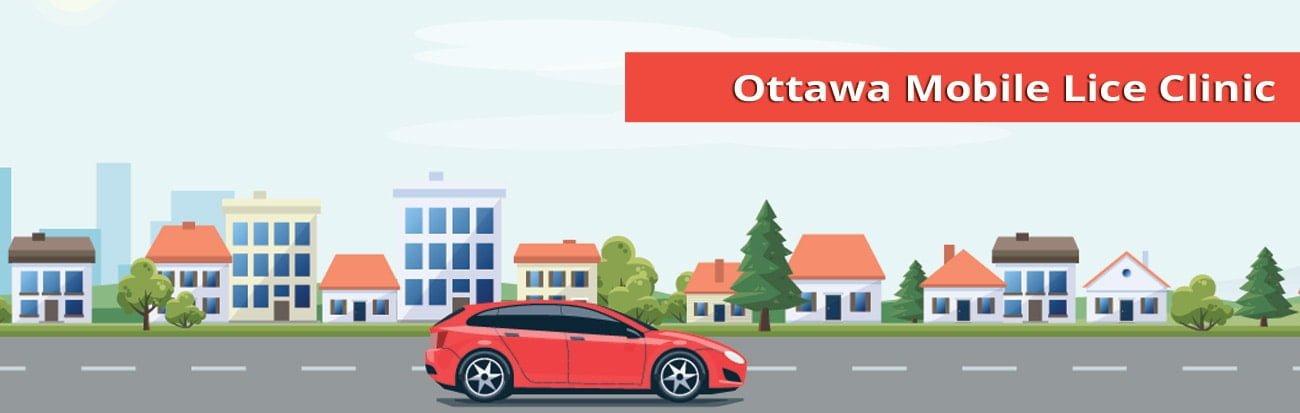 Ottawa mobile lice treatment services